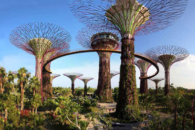 Garden By The Bay Attractions nature and wildlife - varsity park